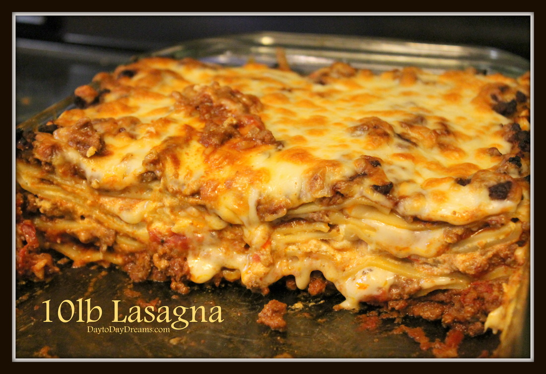 10lb Lasaga DaytoDayDreams.com