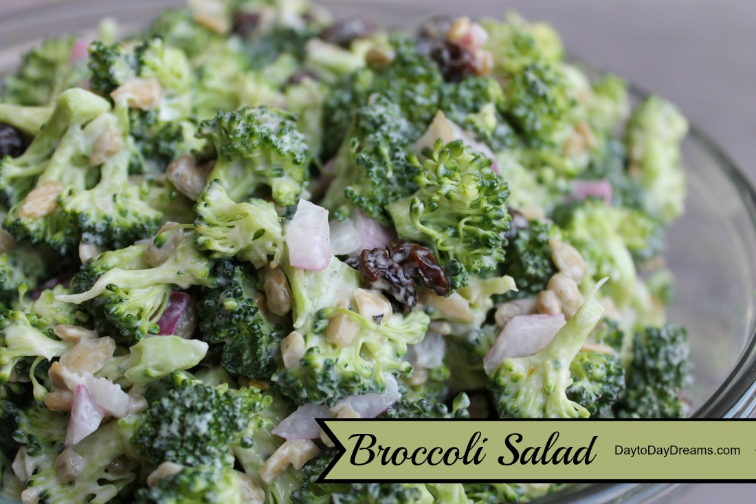 Broccoli Salad  www.daytodaydreams.com