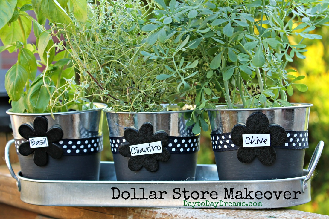 Herb Pots  - Dollar Store Makeover-  daytoDayDreams.com